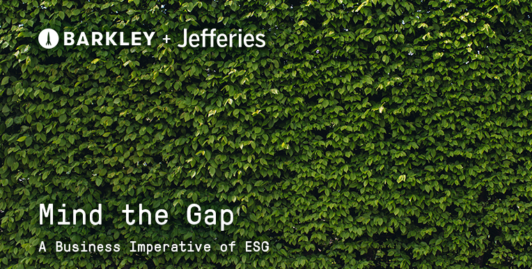 Mind the Gap: The Business Imperative of ESG