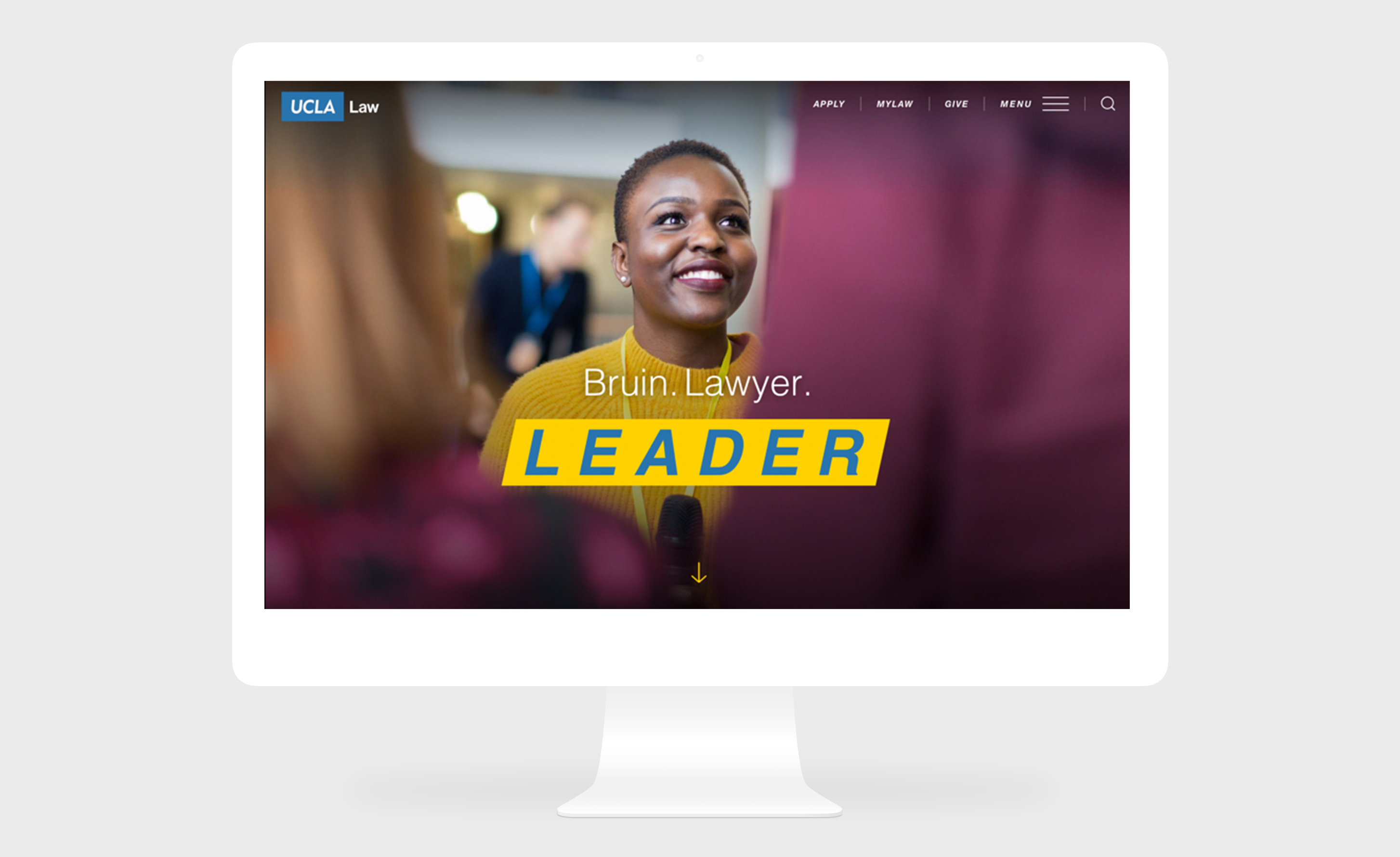 UCLA Law School: Website and digital experience.